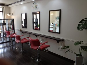hair_salon_reir1